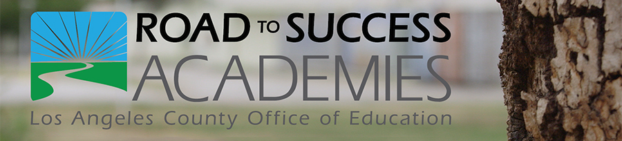 ROAD TO SUCESS ACADEMY