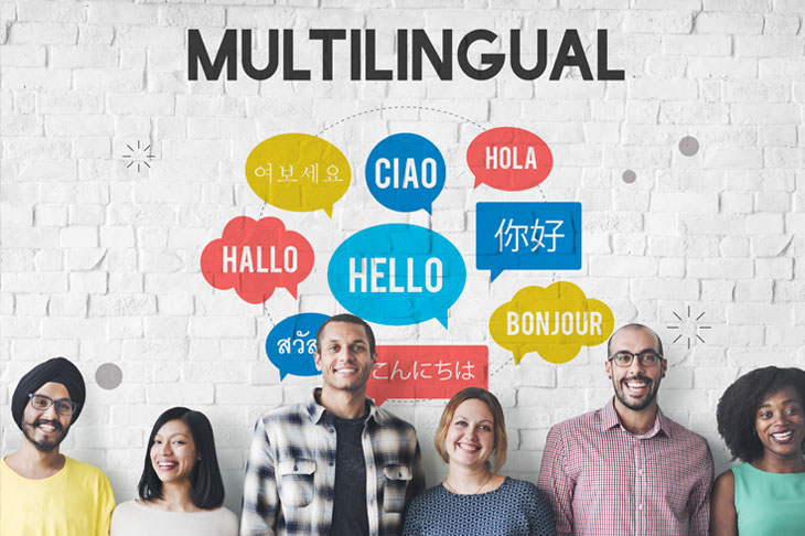 Multilingual Teacher Support